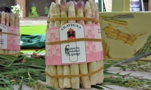Cilavegna asparagi2