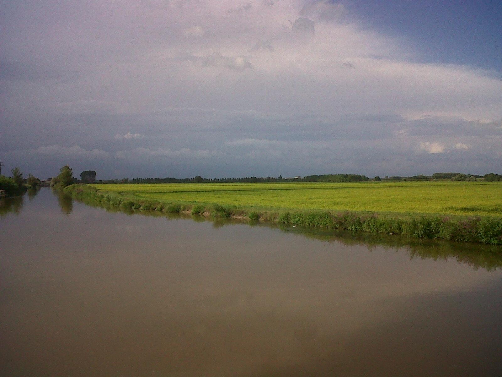 Agricoltura vivo in lomellina for Irrigazione per sommersione
